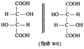 RBSE Solutions for Class 12 Chemistry Chapter 16 त्रिविम रसायन image 10