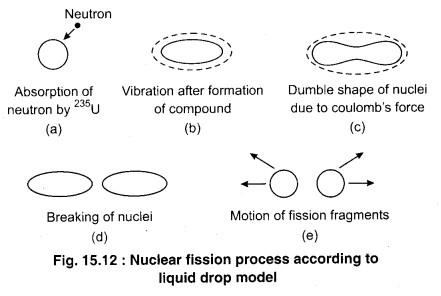RBSE Solutions for Class 12 Physics Chapter 15 Nuclear Physics 23