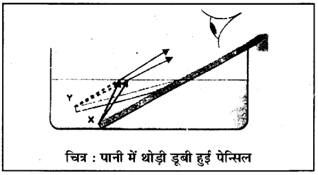 RBSE Class 10 Science Board Paper 2018 image 22