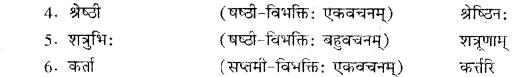 RBSE Solutions for Class 10 Sanskrit स्पन्दन Chapter 6 महाराणा प्रतापः 6b