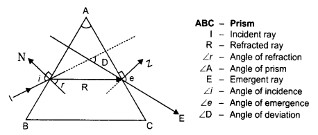 RBSE Solutions for Class 10 Science Chapter 9 Light - 70