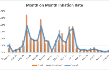 Month on Month Inflation Graph