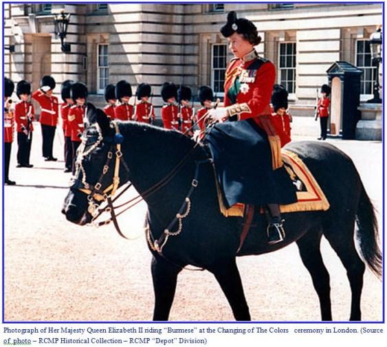 Photograph of Queen Elizabeth II riding Burmese
