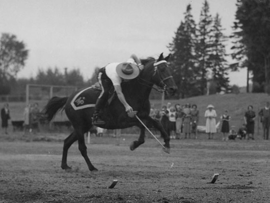 Photograph of RCMP member demonstrating his skills at tent pegging while at a full gallop (Source of photo - Ric Hall's Photo Collection).