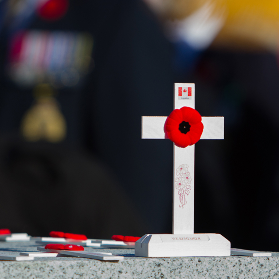 hotograph of the white Remembrance crosses placed by the Cloverdale Girl Guide troop (Source of photo - Sheldon Boles).
