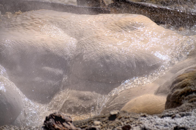 Yellowstone_786-DSC_0875_08-13-2015_144827