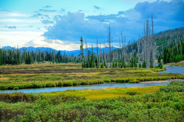 Yellowstone_797-DSC_1673_08-14-2015_164647