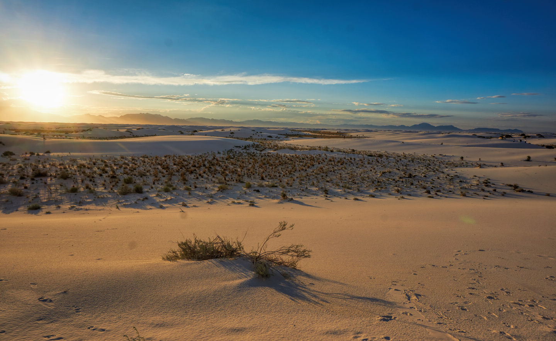 white-sands-9