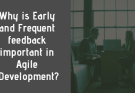 Why is Early and Frequent feedback important in Agile Development?