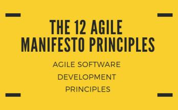 THE 12 AGILE MANIFESTO PRINCIPLES - RCV Academy