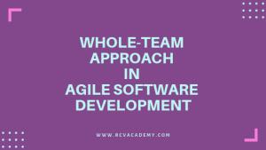 Whole-Team Approach in Agile Development Methodology
