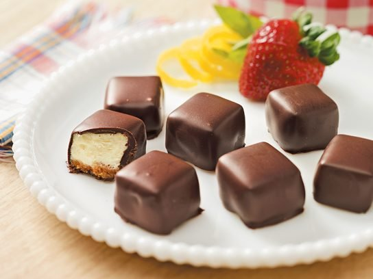 Chocolate-Covered Cheesecake Squares