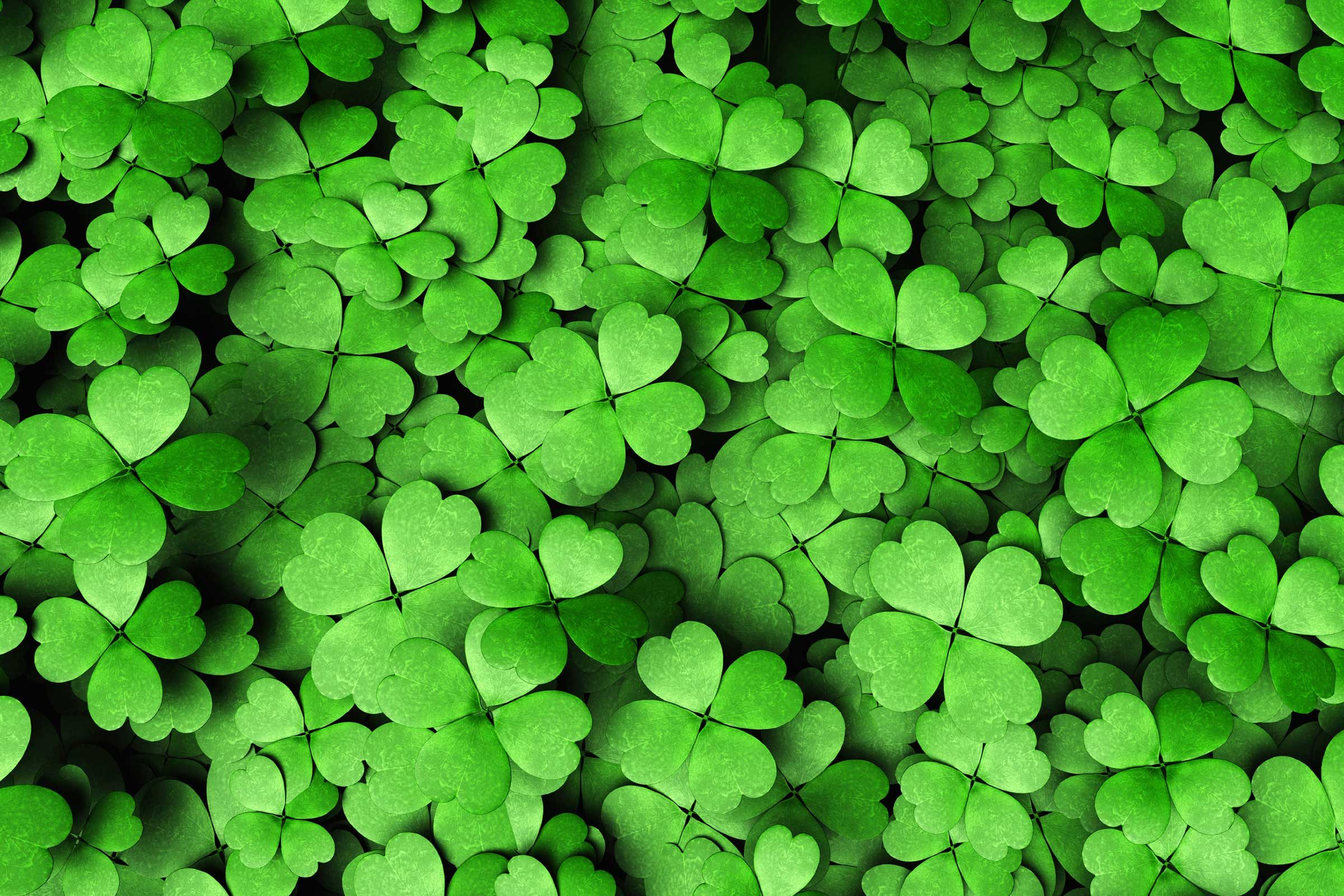 St Patricks Day Facts That Arent True  Readers Digest