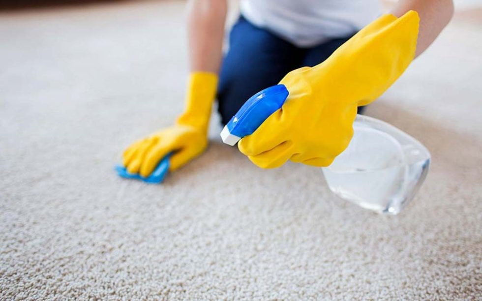 Spring Cleaning with Allergies: How to Avoid Allergy ...
