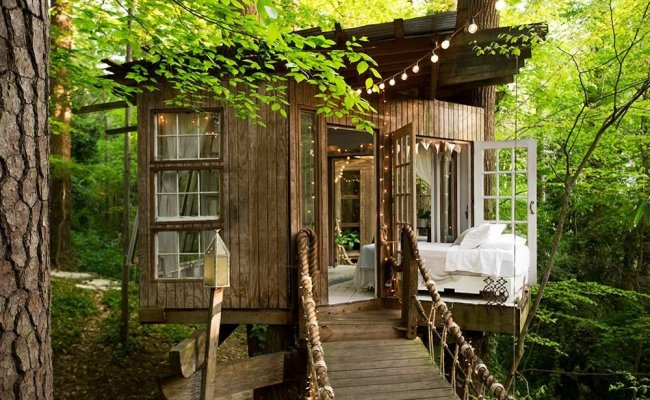 Photos Of Popular Tree House Airbnb In Atlanta Reader S
