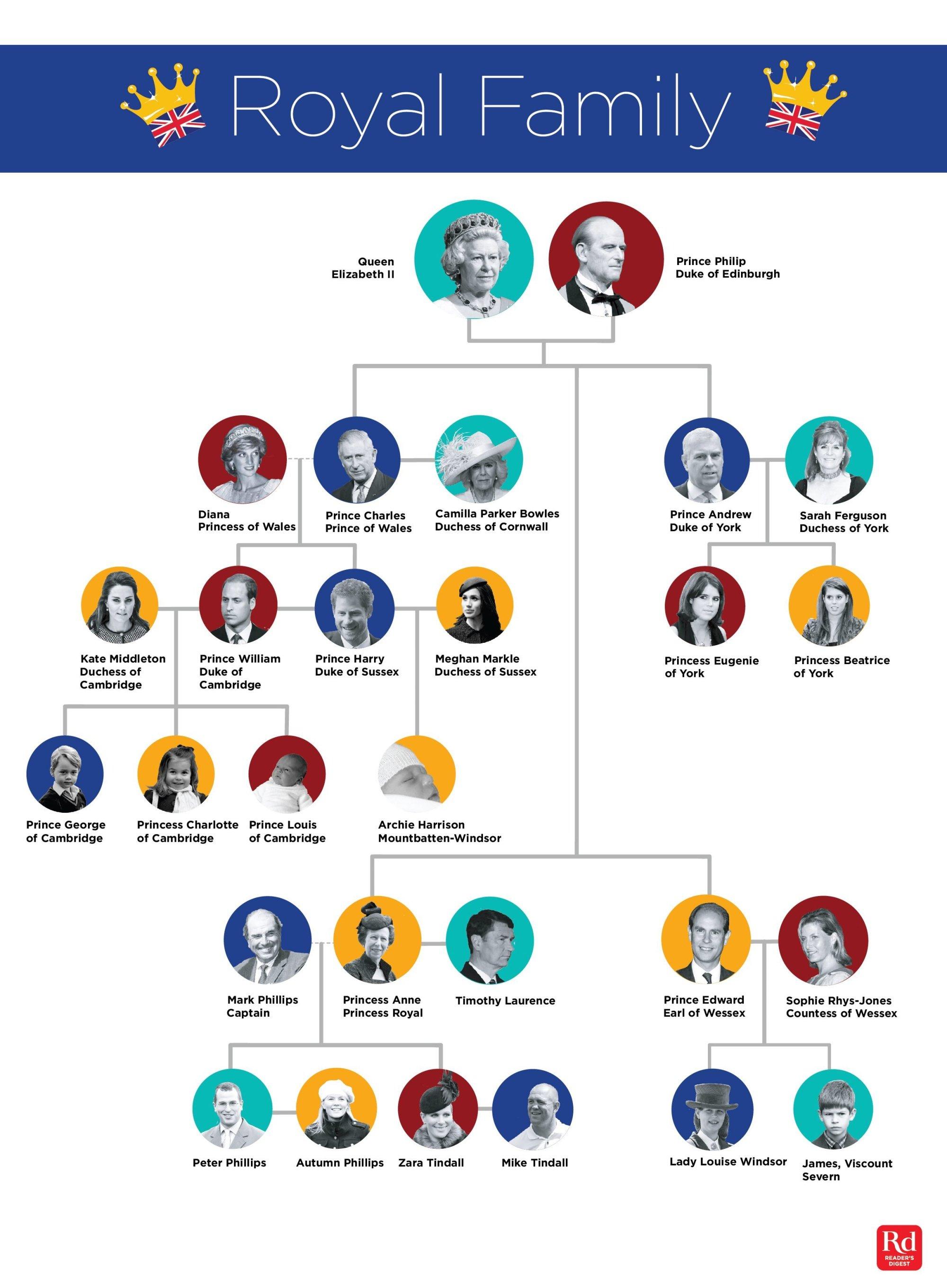 hight resolution of royal family tree