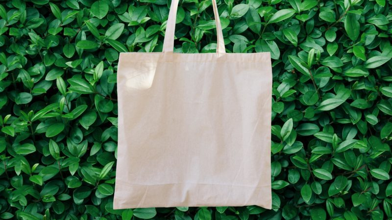 reusable bag in front of greenery