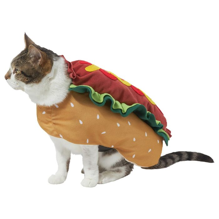 3 out of 5 stars with 1 ratings. 36 Best Cat Halloween Costumes For 2021 Reader S Digest
