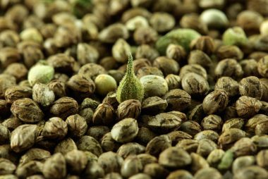 04_hemp_Foods_That_help_body_muscles_