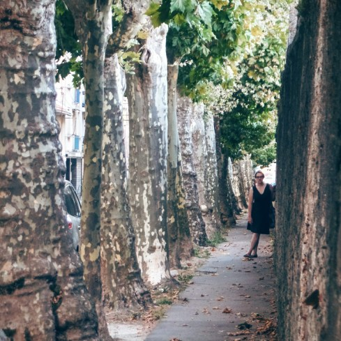 These long rows of pruned trees (Linden trees, perhaps?) are all over France. This picture of Dee was taken in Nantes.