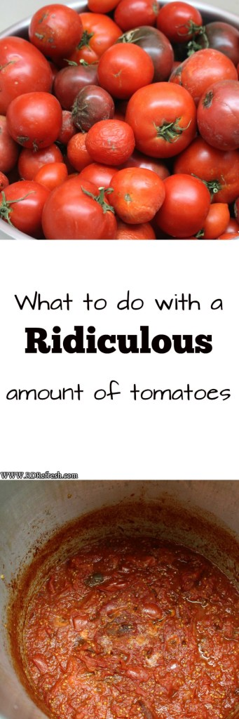 What to do with a ridiculous amount of tomatoes