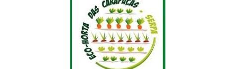 Eco Hortas comunitárias em Serpa