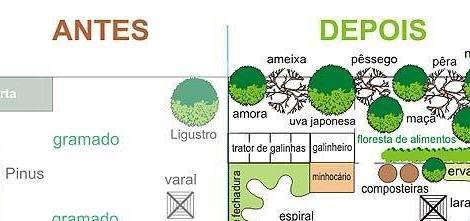 Sugestão de design para o seu jardim
