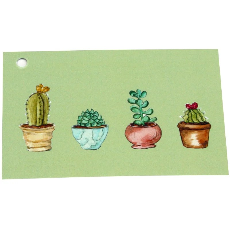 Re-wrapped: ECO Friendly Wrapping Paper Tags Cactus by Sophie Botsford made from 100% Unbleached Recycled Paper