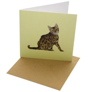 Re-wrapped: ECO Friendly Birthday Wrapping Paper Cat Breeds Bengal Greetings Card by Sophie Botsford made from 100% Unbleached Recycled Card