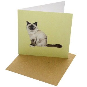 Re-wrapped: ECO Friendly Birthday Wrapping Paper Cat Breeds Birman Greetings Card by Sophie Botsford made from 100% Unbleached Recycled Card