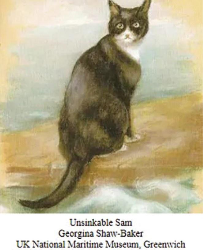 Sam-the-Unsinkable-Reach-Alcance-4