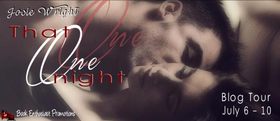 that one night blog tour banner