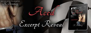 Aced by K. Bromberg…Excerpt Reveal