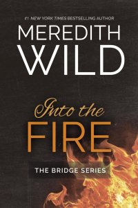 Into the Fire by Meredith Wild…Blog Tour