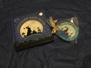 Goodnight Baby Moon light up book for bedtime with biscuit