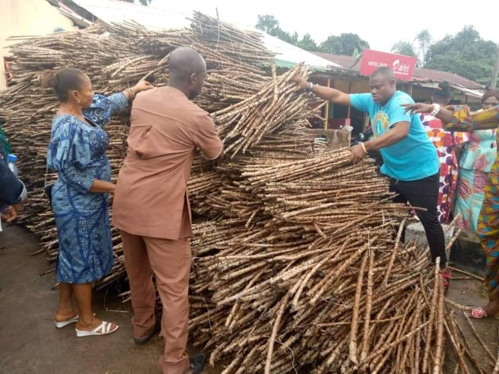Beneficiaries taking delivery of their cassava stems