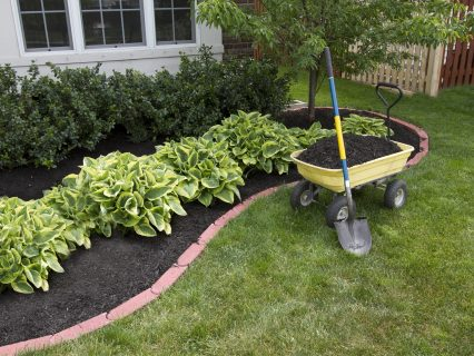Adding new mulch to your Garden every year is really good for your Garden's health!