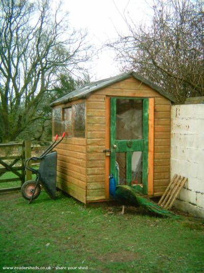 Recycled Goat House - Alison Chapman