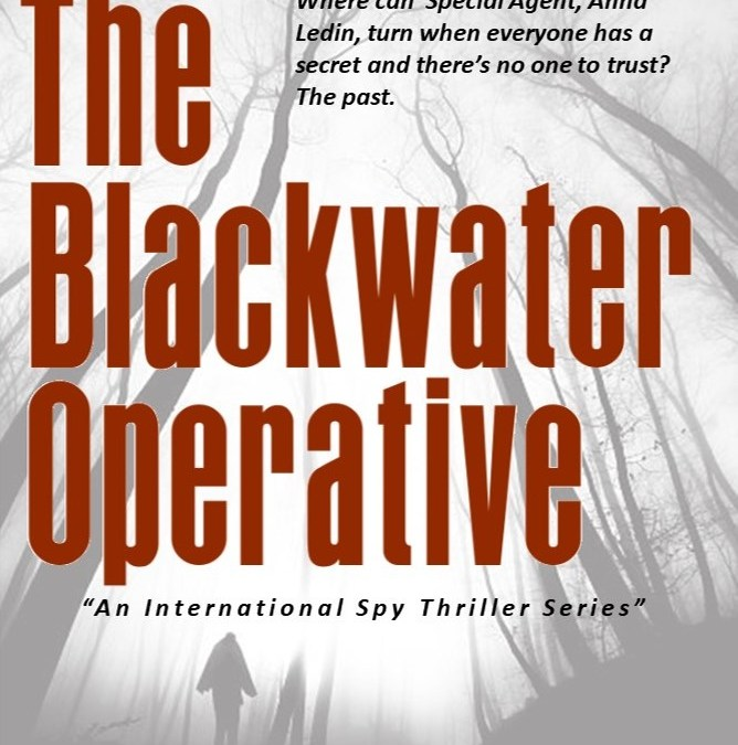 The Blackwater Operative | L.L Abbott