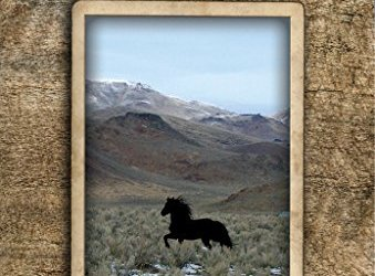 THE WILD HORSE CONSPIRACY by Craig C. Downer