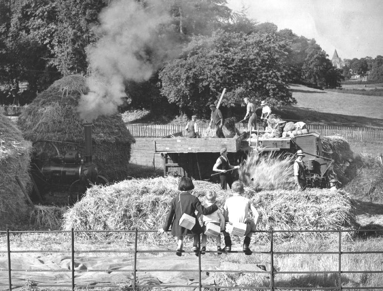 1930s farm life Original booklists: back to the land: tales of rural life  they write about  growing up on the farm in the 1930s and 1940s, and about the.