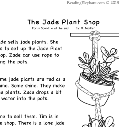 Silent e Stories- The Jade Plant (FREE) - Reading Elephant [ 874 x 962 Pixel ]