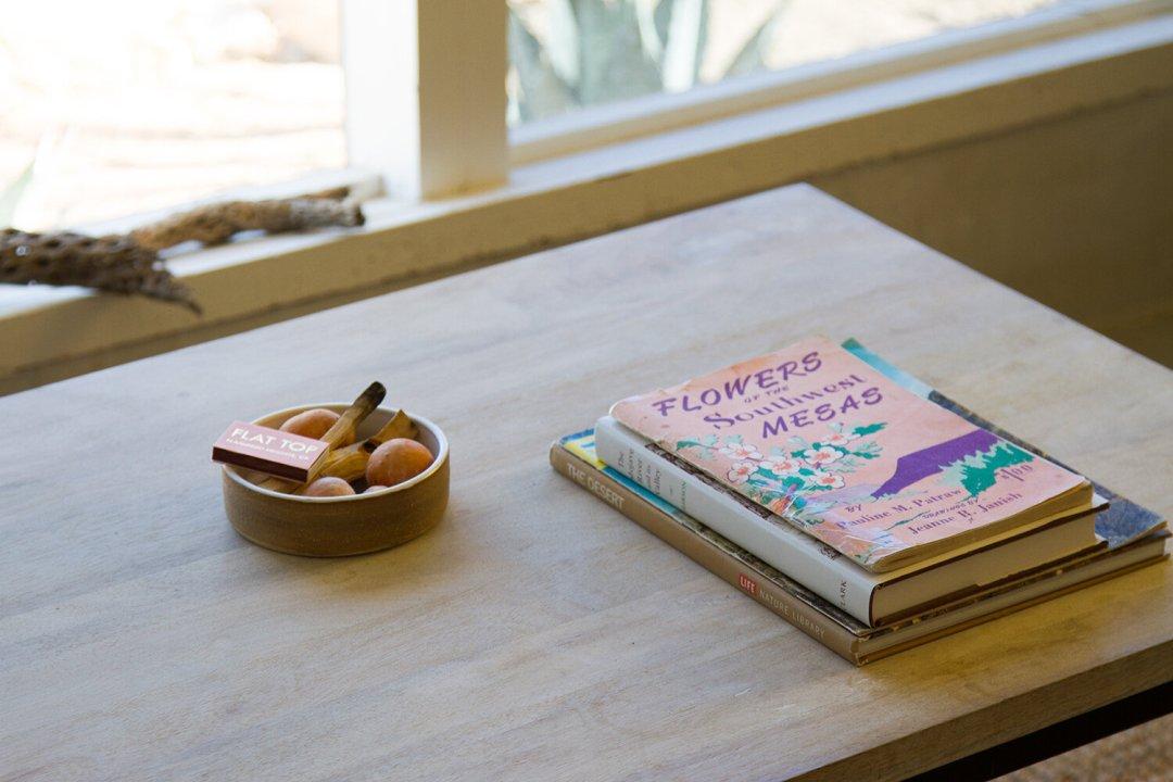 joshua_tree_reading_my_tea_leaves_IMG_6127