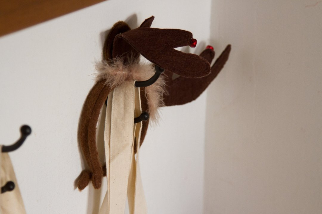 antlers |reading my tea leaves