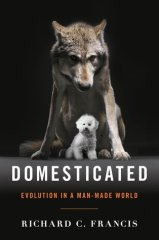 domesticated by richard francis