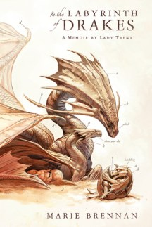 in the labyrinth of drakes by marie brennan