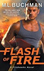 flash of fire by ml buchman