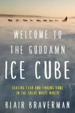 welcome to the goddamn ice cube by blair braverman