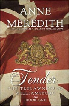 tender by anne meredith