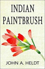 indian paintbrush by john a heldt